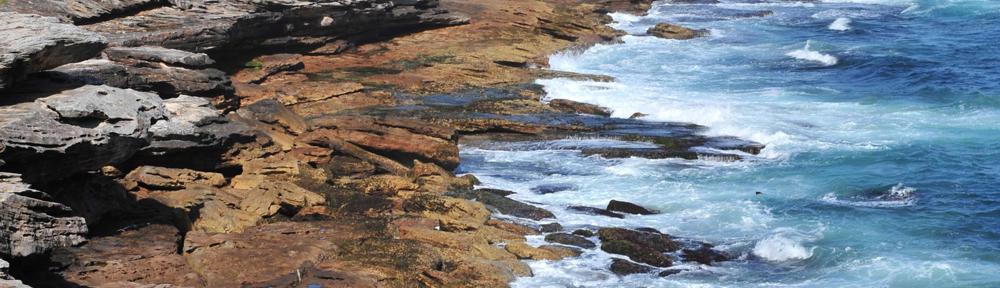 Keller Williams Realty of Coral Springs